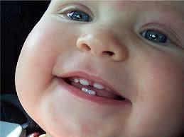 Появление зубов у ребенка